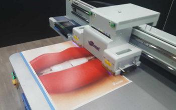 Impression Grand Format Sur Acrylique - My Colors